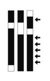 Japansk hodebry - howto 2